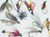 wet flies,10 x Trout flies, Assorted patterns,