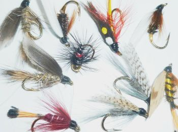 Traditional wet flies,10 x Trout flies, Assorted patterns,