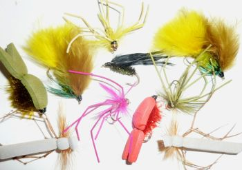 Autumn flies,10 x Trout flies, Assorted patterns,