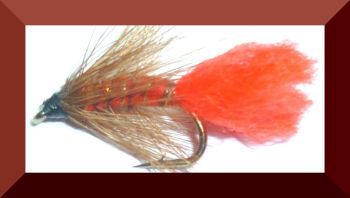 Soldier palmer,wet fly  (W9)