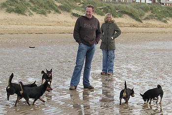 Lancashire Heelers, St Annes beach