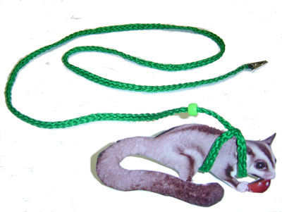 SUGAR GLIDER HARNESS AND LEASH