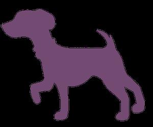 WALKING ONE DOG