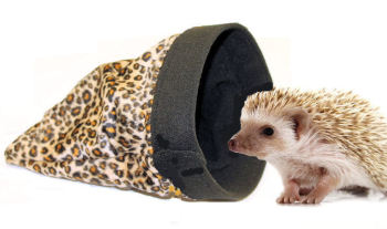 HEDGIE POUCH