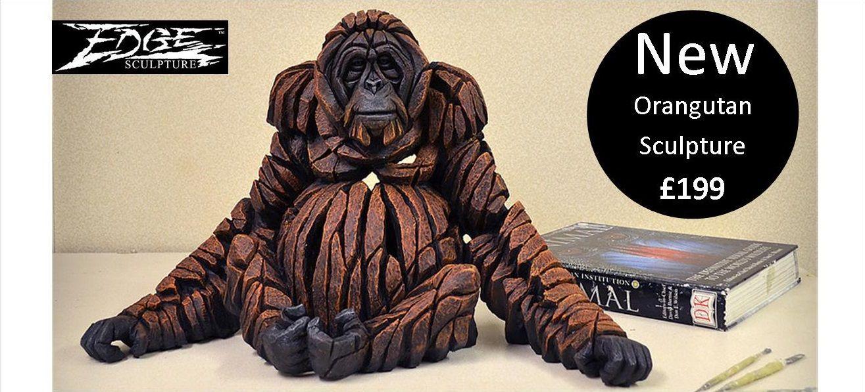 Slider Banner - Orangutan
