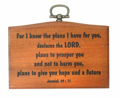 Small 9.5cm Jeremiah 29:11 For I know the plans Christian plaque wooden