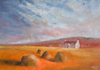 andrew pennill shetland croft