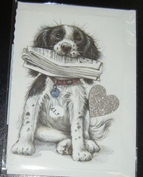 Springer Spaniel - Dog Greeting Card Blank Inside