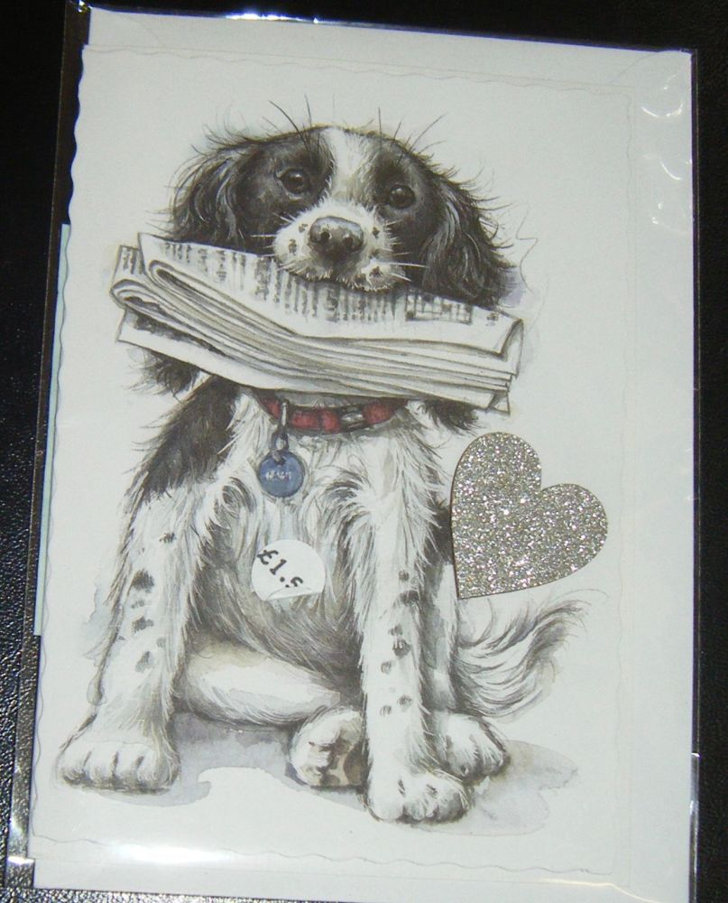 Springer Spaniel- Dog Greeting Card Blank Inside