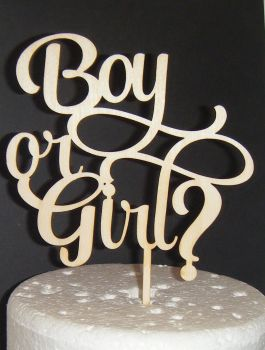 Boy or Girl? Baby Shower Cake Topper 2