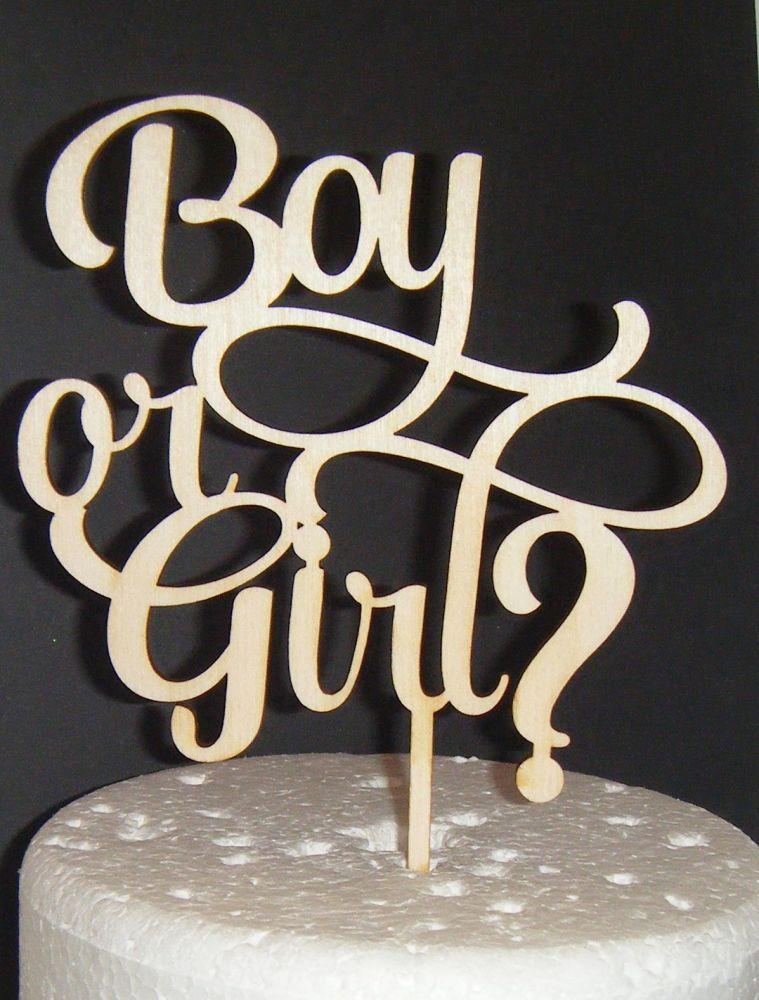Boy or Girl? Baby Shower Cake Topper 2