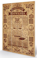 Quidditch At Hogwarts - Harry Potter - Wooden Panel Wall Art