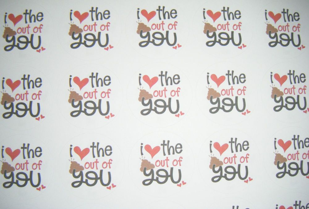 A4 35 Per Sheet Sheet of I Love The Sh*t Out Of You Stickers