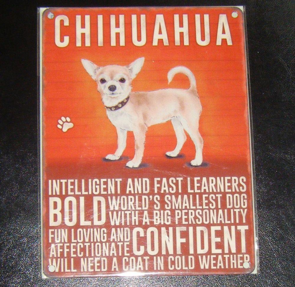 Chihuahua  - Dog Breed Metal Wall Sign