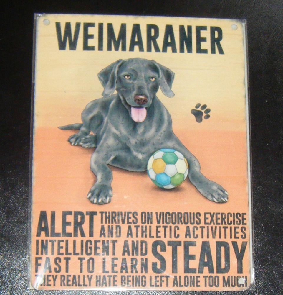 Weimaraner  - Dog Breed Metal Wall Sign