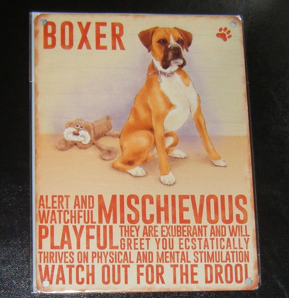 Boxer - Dog Breed Metal Wall Sign