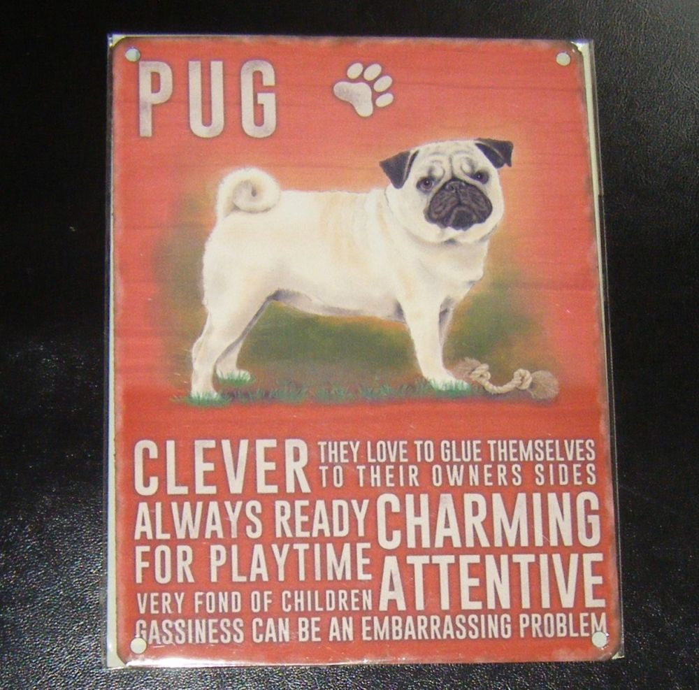 Pug - Dog Breed Metal Wall Sign