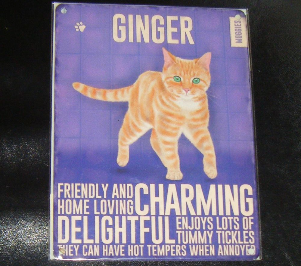 Ginger - Cat Breed Metal Wall Sign