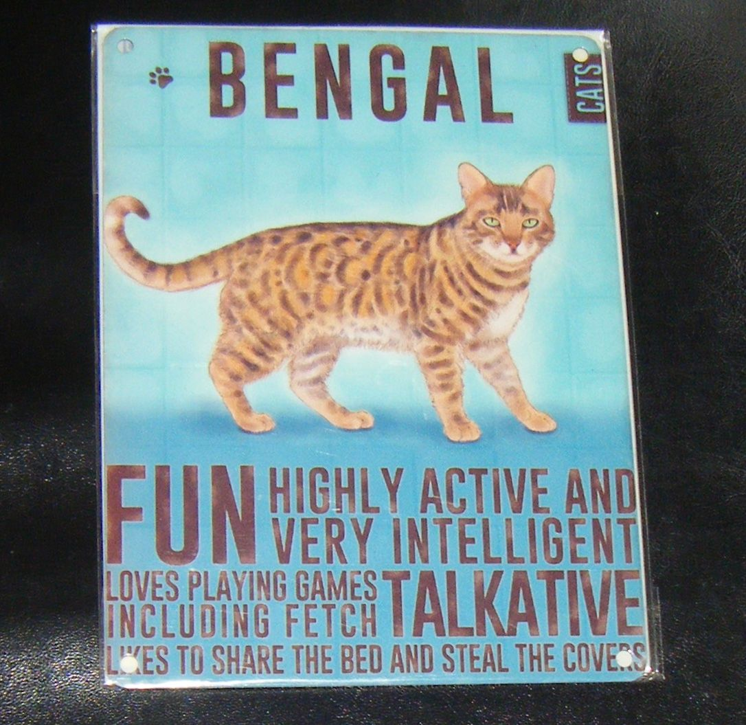 Bengal - Cat Breed Metal Wall Sign