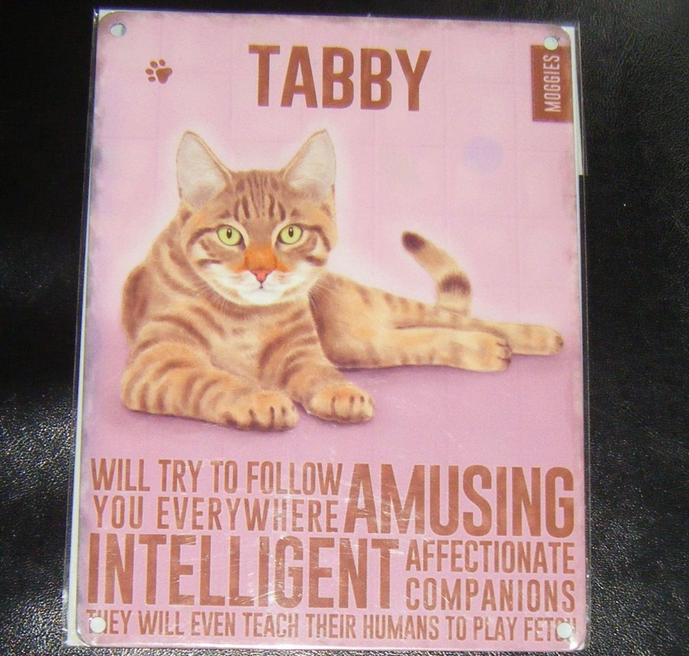 Tabby - Cat Breed Metal Wall Sign
