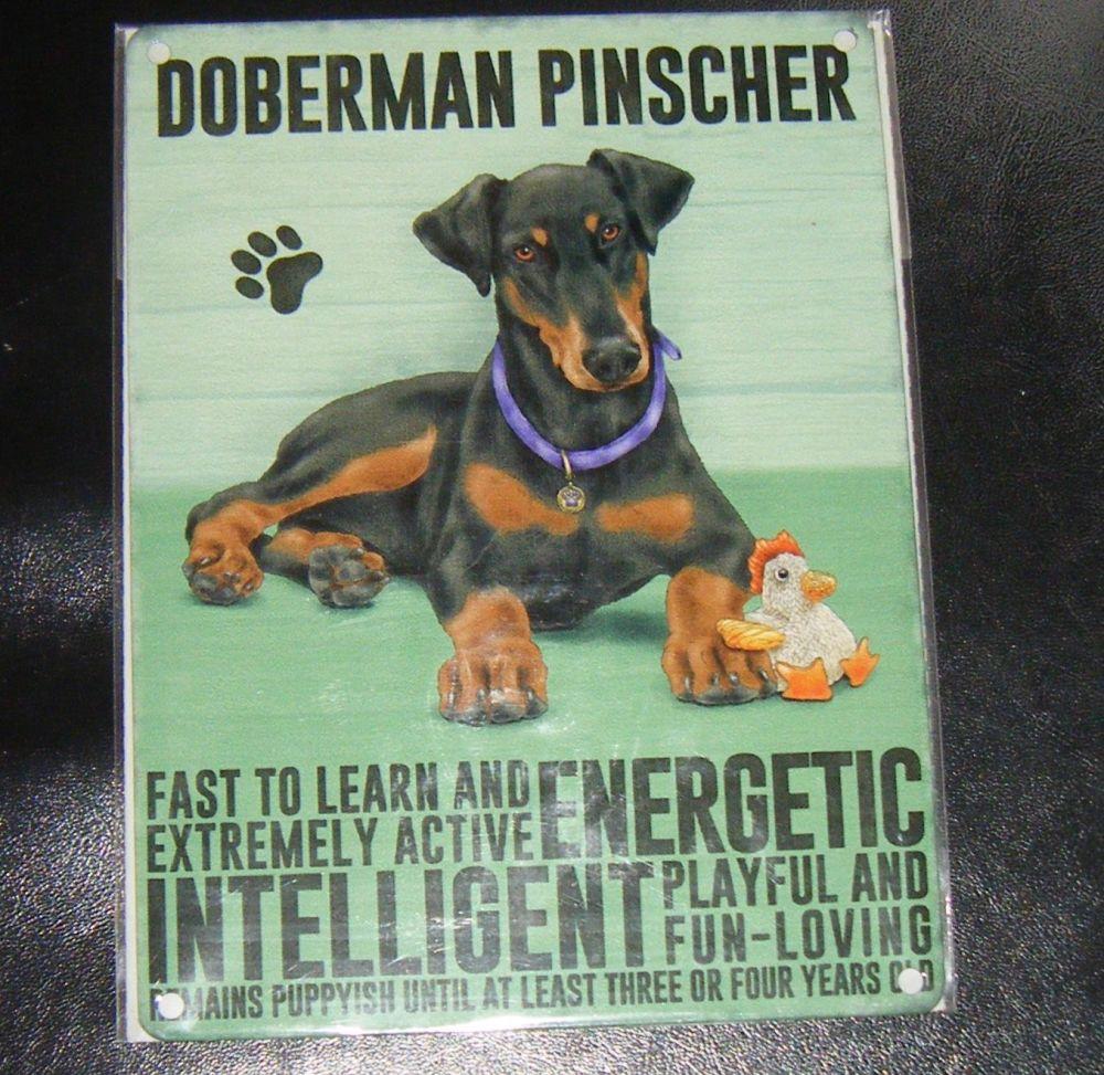 Doberman Pinscher - Dog Breed Metal Wall Sign