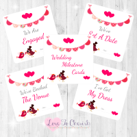 Bride & Groom Cute Love Birds & Bunting Dark Pink Wedding Milestone/Journey Cards