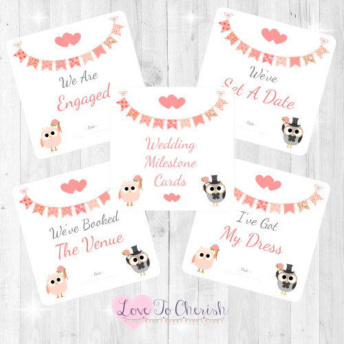 Bride & Groom Cute Owls & Bunting Peach Wedding Milestone/Journey Cards