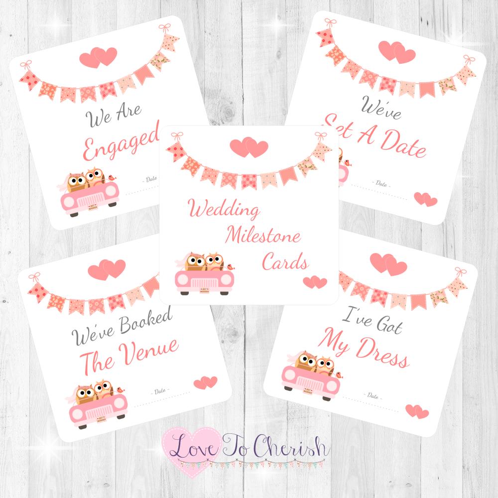 Bride & Groom Cute Owls in Car Peach Wedding Milestone/Journey Cards