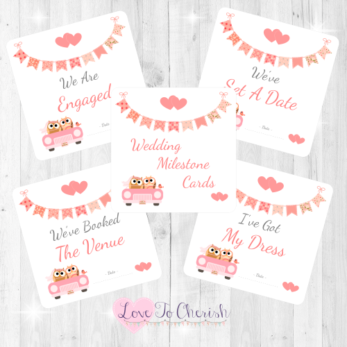 Bride & Groom Cute Owls in Car Peach Wedding Milestone/Journey Cards