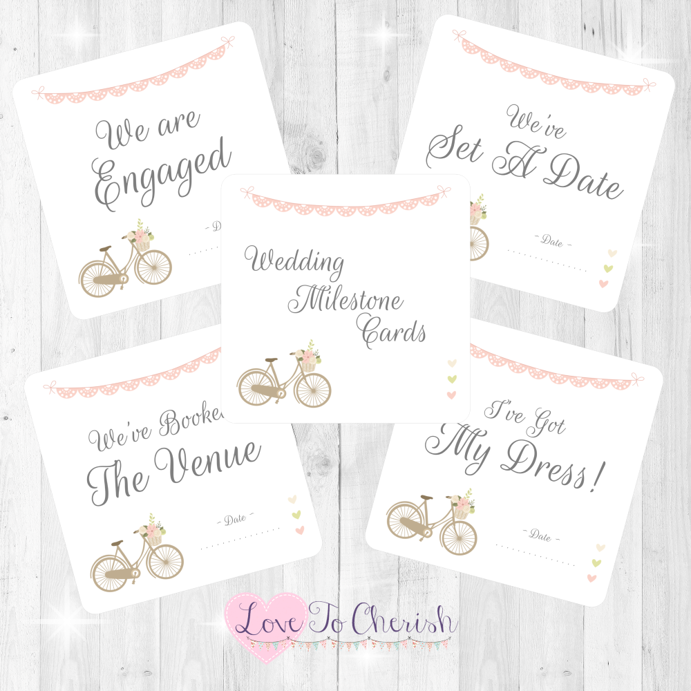 Vintage Bike/Bicycle Shabby Chic Pink Lace Bunting Wedding Milestone/Journe