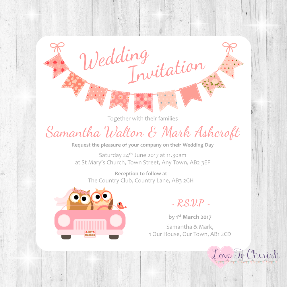 Bride & Groom Cute Owls in Car - Peach