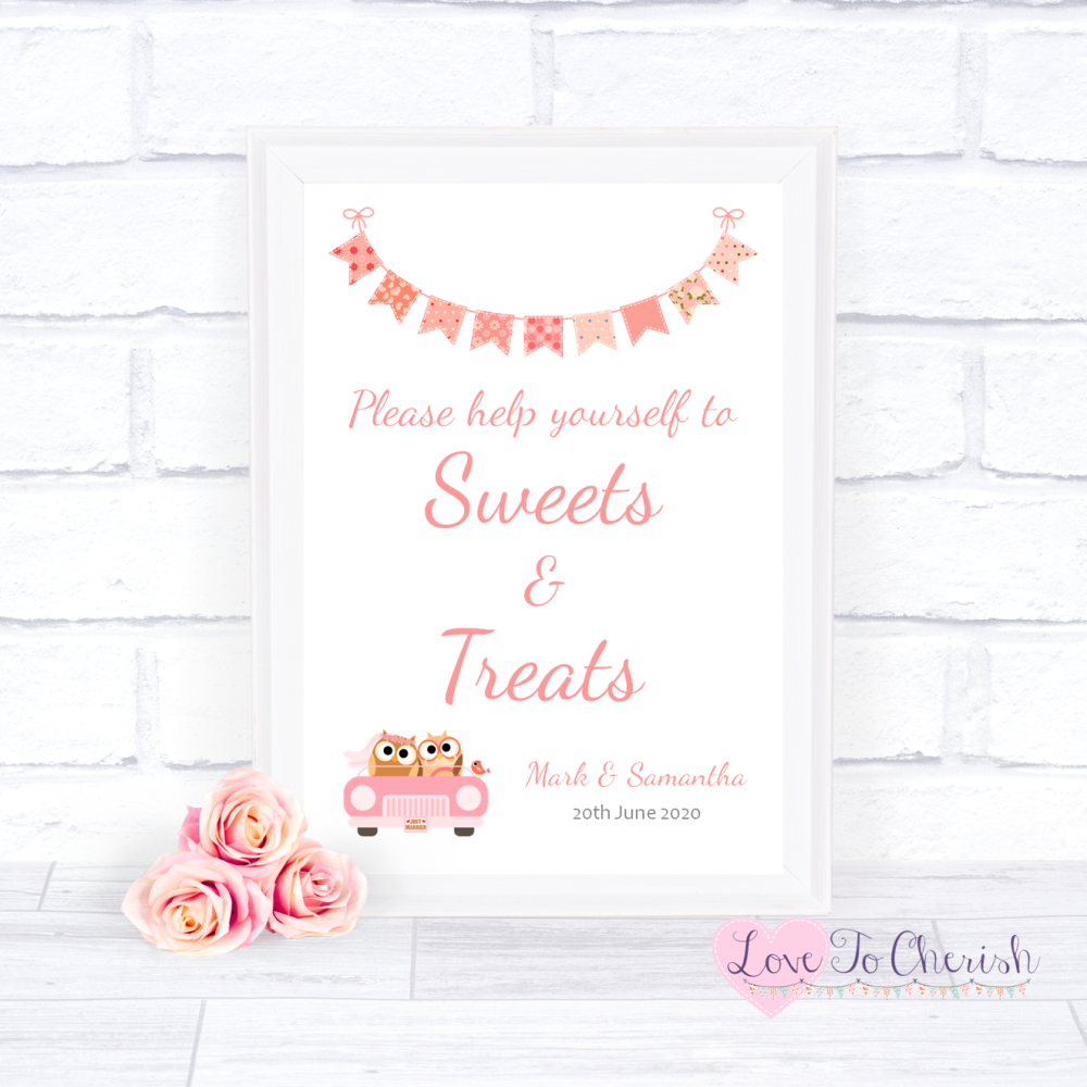 Sweets & Treats / Candy Table Wedding Sign - Bride & Groom Cute Owls in Car