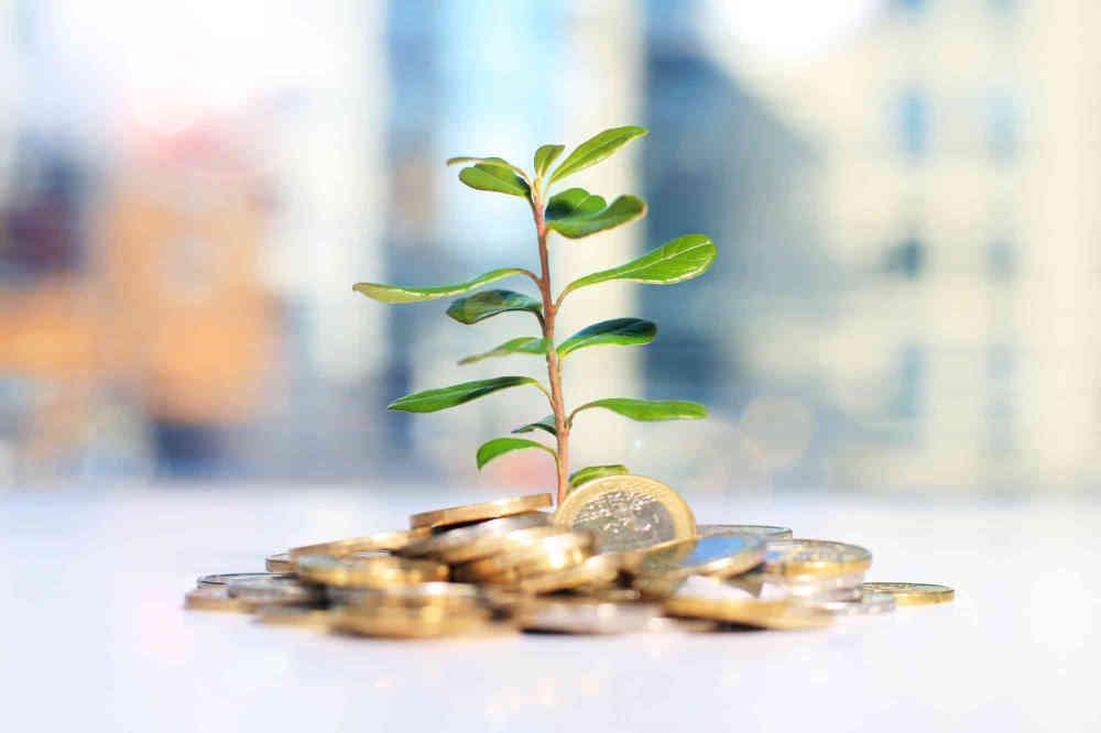 Plants - Save Money