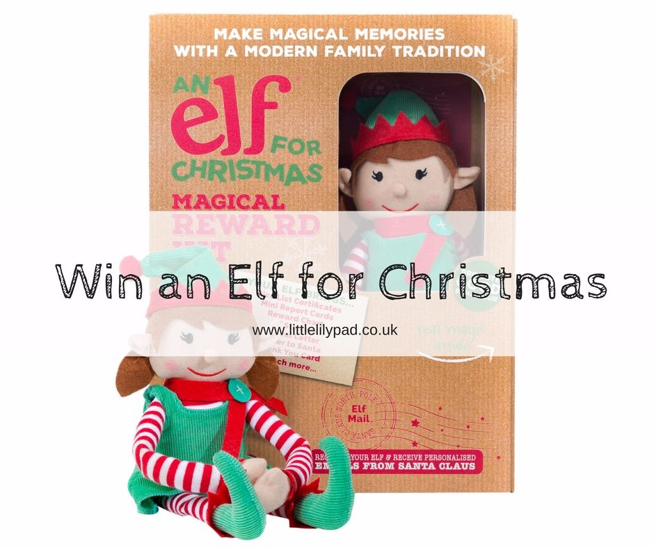 Win an Elf for Christmas