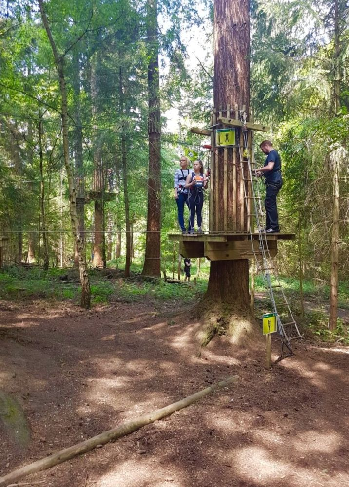 Go Ape - training