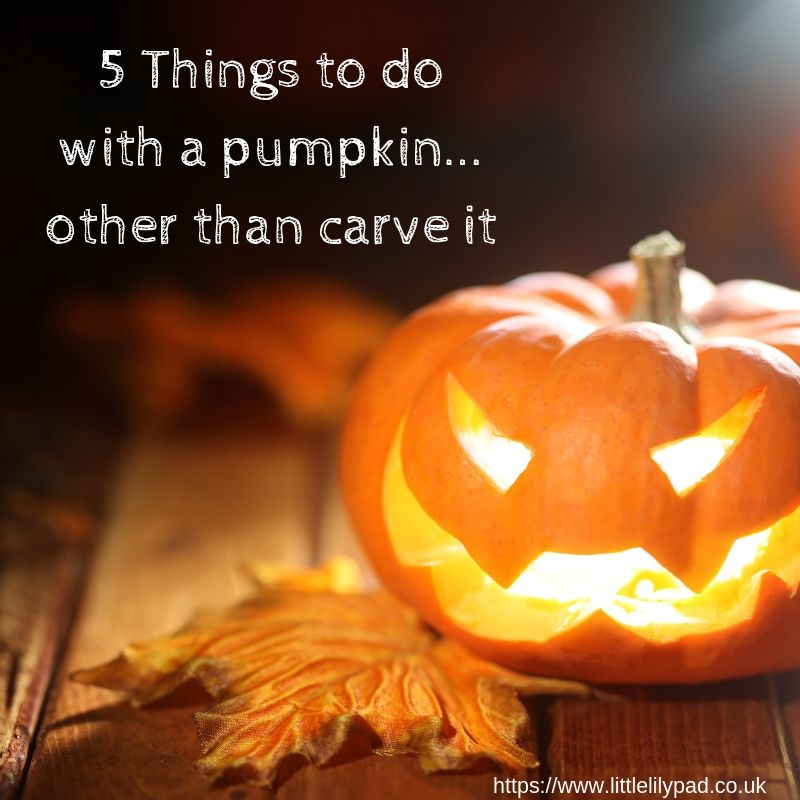 5 Things to do with a pumpkin... other than carve it