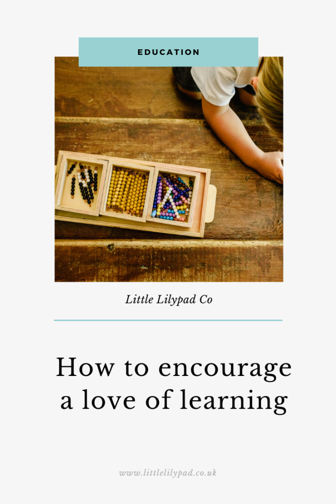 PIN - How to encourage a love of learning