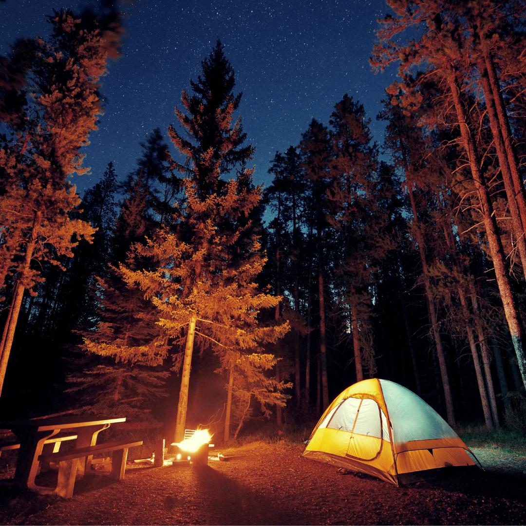 LLP - Camping