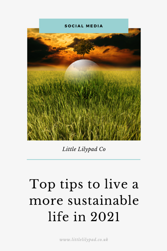 PIN - Top tips for being more sustainable in 2021