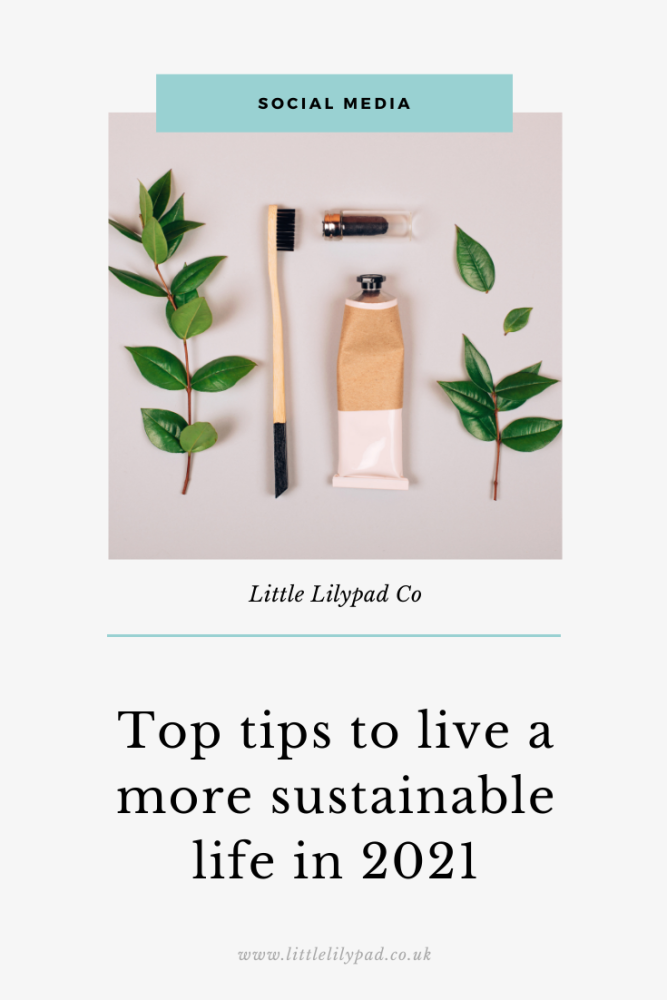 PIN - Top tips for being more sustainable in 2021 (1)