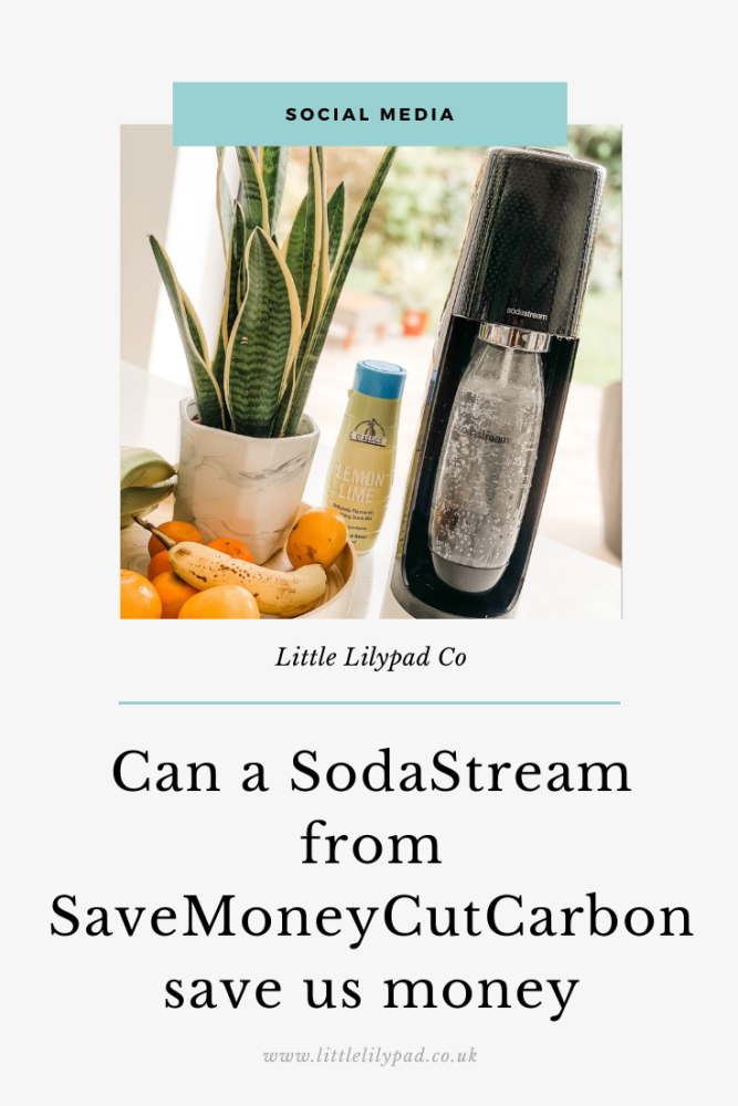 PIN - Can a SodaStream Save Us Money