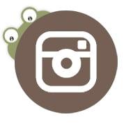 frog-instagram