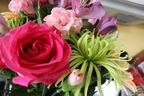 serenata flowers1