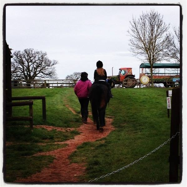 Hatton - pony rides