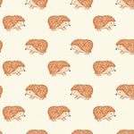 Bethan Janine Nature trail hedgehogs on natural
