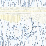 Carolyn Friedlander- FREIDLANDER tree stripe border in blue