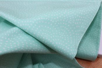 Dashwood Studios Twist in mint