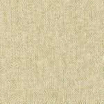Robert Kaufman Shetland Flannel -CACTUS