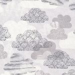Cloud 9 Passing clouds - LAMINATE