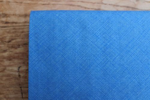 Carolyn Friedlander cross hatch weave in blue